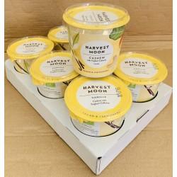 SONDERVERKAUF Vegane Joghurts 6 x 300g